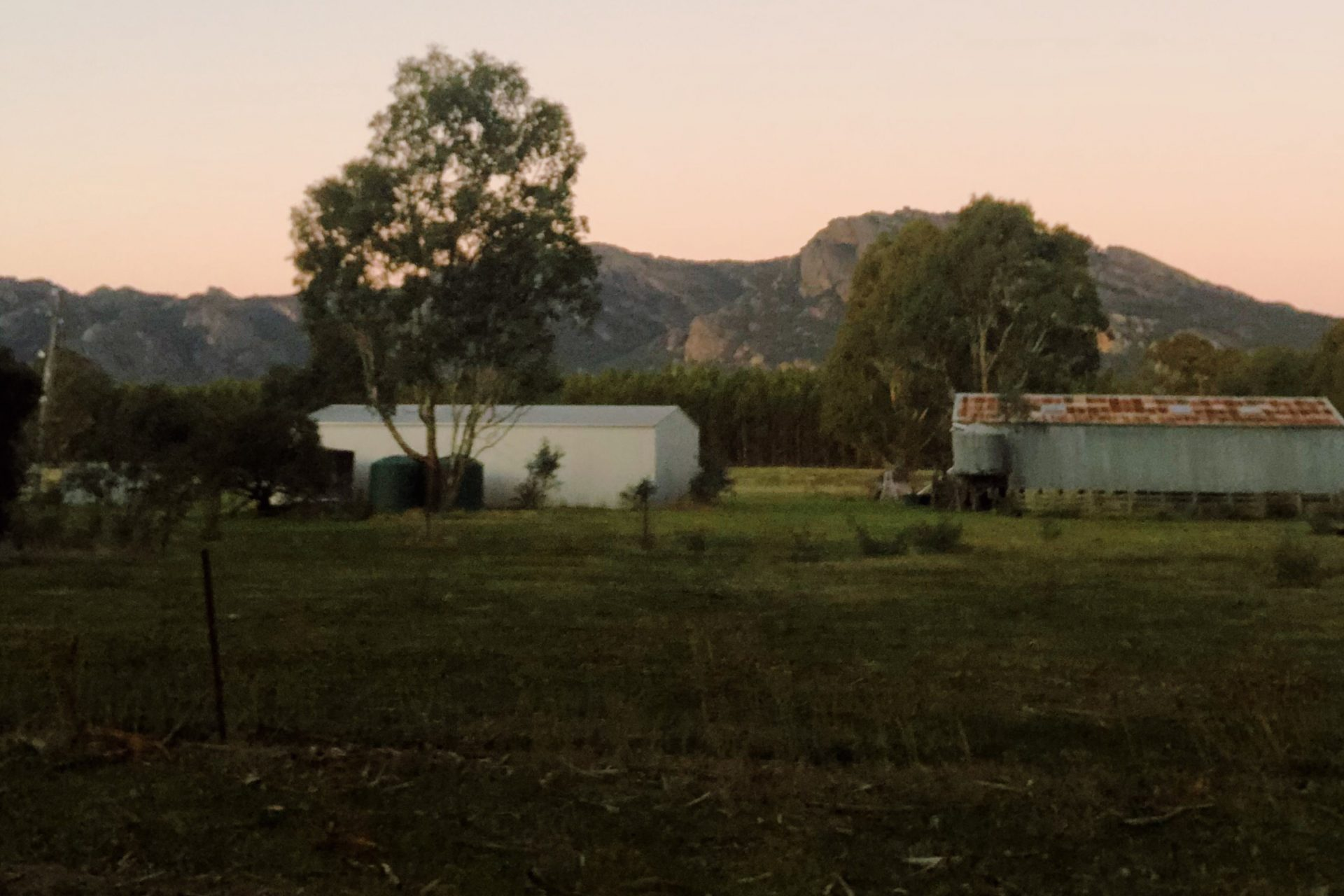Two sheds in a green country yard with green trees and mountains in the background.